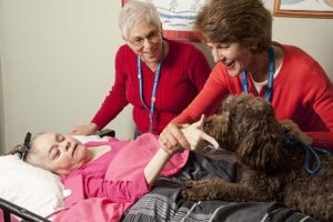 Care Dimensions pet therapy dog Tessie visits female hospice patient